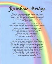 pet prayer rainbow bridge prayer the compassionate gardener a ministry of