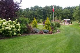 landscape landscape design tree mendus nursery