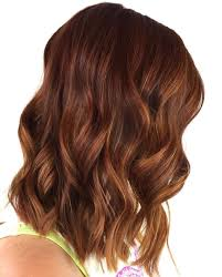light brown highlights on dark hair light brown highlights for dark hair love these chestnut colors and