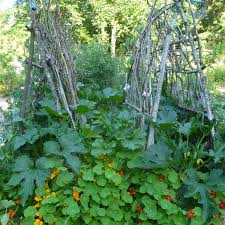 simple garden trellis ideas mehmetcetinsozler com