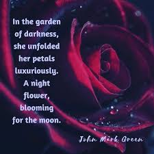 Flower And Love Quotes - 425 best romance and love images on pinterest poetry romance