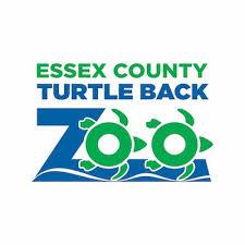 turtle back zoo light show 2017 turtle back zoo turtlebackzoo twitter