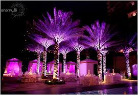 Outdoor Up Lighting For Trees Outdoor Up Lighting For Trees Lovely Outdoor Lighting