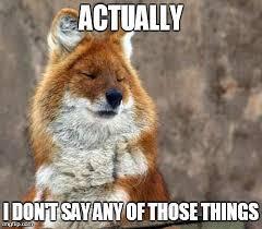 Fox Meme - fox meme