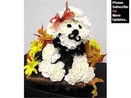 dog flower arrangement carnation dog flower arrangement picture combination of