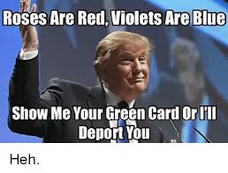 Green Card Meme - roses are red violets are blue show me your green card or iii deport