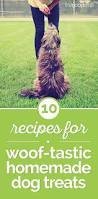 10 recipes for woof tastic homemade dog treats thegoodstuff