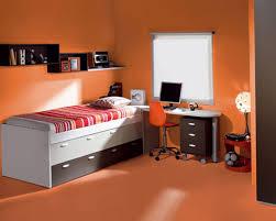 Orange And Blue Home Decor Condo Paint Color Ideasbedroom Luxury Home Design