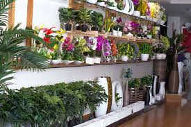 artificial plants for balcony u2013 best balcony design ideas latest