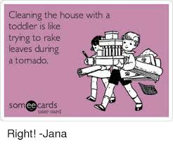 Clean House Meme - cleaning the house with a toddler is like trying to rake leaves