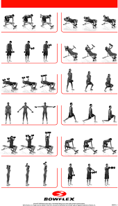 get 20 dumbbell workout program ideas on pinterest without