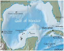 Map Of The Keys Florida by Map Of The Gulf Of Mexico Depicting The Location Of The Flower