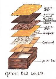 Vegetable Garden Preparation by Creative Of Preparing Raised Garden Bed Build A Vegetable Garden