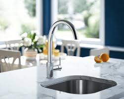 Bisque Kitchen Faucets by 711 C Chrome Single Handle Kitchen Faucet