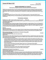 data scientist resume data scientist resume 1 7a summary sle model vesochieuxo
