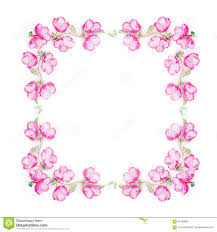 floral frame with pink flower buds branches and leaves on
