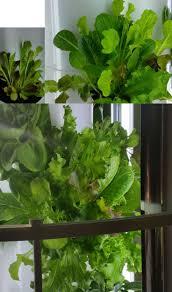 20 best tower garden vertical gardening system aeroponic