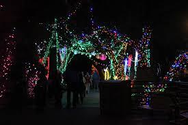 Phoenix Zoo Lights by Motel Miguel Reid Park Zoo Lights