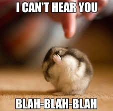 Animal Meme Pictures - 20 cutesy animal memes for animal lovers sayingimages com