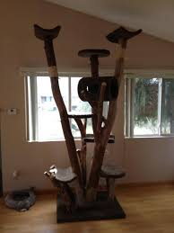 Cat Scratcher Tower Cheap Cat Towers Best Cat Tree Without Carpet Ideas Fashion