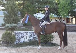 news maryland horse show association