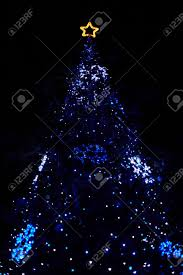 how to water a real christmas tree home design inspirations