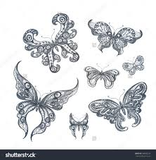 pencil sketch drawing of butterfly how to draw a butterfly for