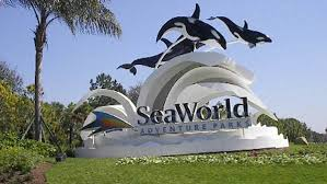 seaworld orlando offering responders free admission wfla