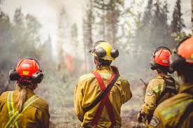 Wildfire Bc Jobs by Firefighter Jobs Fire Fighting Fitness Test Hiring Panorama