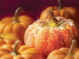 fall pumpkin wallpaper sparkly pumpkin pictures photos and images for facebook