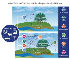 biogeochemical cycles national climate assessment