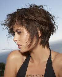 coupe pour cheveux pais 5 courts coupes pour cheveux épais et des visages ronds1 cheveux