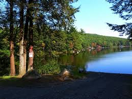 Massachusetts forest images Boston area campgrounds erving state forest boston camping jpg