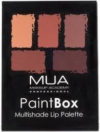Makeup Academy Online Mua Makeup Academy Paint Box Lip Palette Price In India Buy Mua