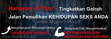 fungsi obat hammer of thor klg herbal