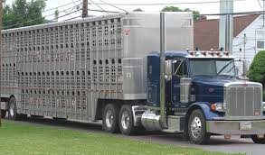 Seeking Trailer Pork Producers Seeking Waiver On Transportation Regulations Iowa