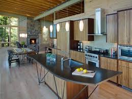 Modern Kitchen Interiors by Black Kitchen Cabinets Pictures Ideas U0026 Tips From Hgtv Hgtv