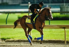 Kentucky How Far Can A Horse Travel In A Day images 2018 kentucky derby updated saturday odds last minute betting jpg%3