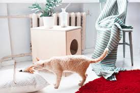 Stylish Furniture Black Velvet Stylish Furniture For Your Beloved Cat Design