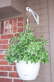 Hooks And Lattice by Garden Design Garden Design With Uquot Hanging Basket With