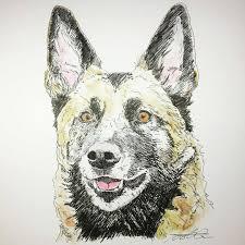 belgian sheepdog gifts kingbee48