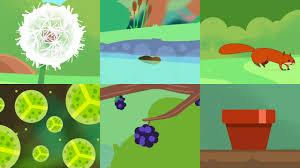 bbc bitesize seeds and seed dispersal on vimeo