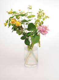 keep flowers fresh by treating them to vodka bleach lemonade or