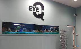 Wall Aquarium by Portfolio Kings Fish Tank