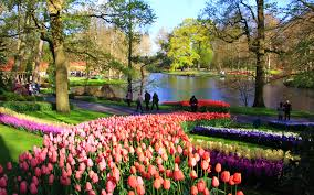 Flowers Bloom by Spring U0027s 12 Best Spots For Flower Tourism Travel Leisure