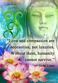 wedding quotes dalai lama and compassion necessities 3 wedding details