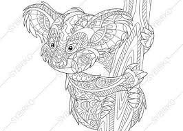 40 coloring pages bears images coloring
