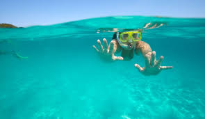 South Dakota snorkeling images Cozumel marine park snorkel day adventure amstar excursion jpg