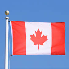 Decorative Flags For The Home Online Get Cheap Decorative Flags Canada Aliexpress Com Alibaba