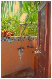 Outdoor Shower Pole by 844 Best Rustic Outdoor Bathrooms Images On Pinterest Outdoor